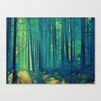 Eyes On The Forest, Not … Canvas Print