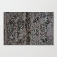 MOLD Canvas Print