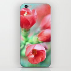 Textured Chaenomeles Japonica iPhone & iPod Skin