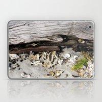 Beach Scene Laptop & iPad Skin
