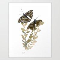 Two Brown Butterflies Art Print