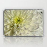 White Chrysanthemum Laptop & iPad Skin