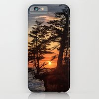 iPhone & iPod Case featuring Sunset through the Trees by Captive Images Photography