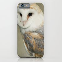 iPhone & iPod Case featuring Barn Owl by jacqi