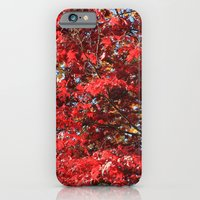 iPhone & iPod Case featuring Fall maple trees of red leaves, in blue sky.  nature landscape photography. by NatureMatters