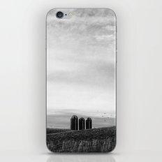 Three in a Row iPhone & iPod Skin