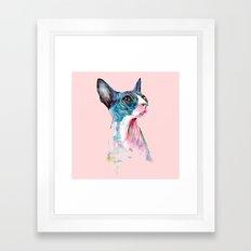 cat on pink Framed Art Print
