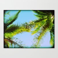Palm Trees Tropical Phot… Canvas Print