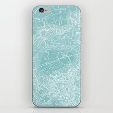 Polar Chill iPhone & iPod Skin