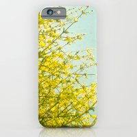 iPhone & iPod Case featuring Morning Light by Cassia Beck