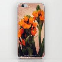 Naranja iPhone & iPod Skin