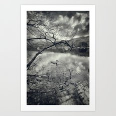 Early morning, Coniston Water Art Print