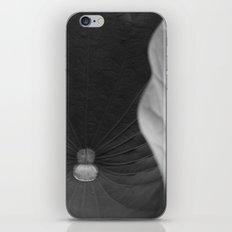 Curled leaf iPhone & iPod Skin