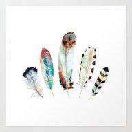 5 Feathers No. 9 Art Print