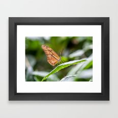Julia Framed Art Print