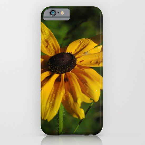 Black Eyed Susans iPhone & iPod Case
