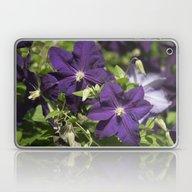 Longwood Gardens - Sprin… Laptop & iPad Skin
