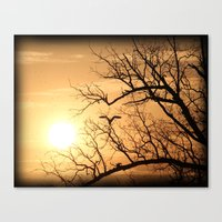 The Heron In The Evening Canvas Print