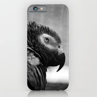 Grey Parrot iPhone 6 Slim Case