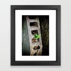 Nature finds a way. Framed Art Print
