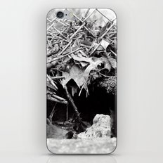 The Hole iPhone & iPod Skin