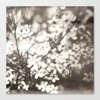 Little Notes To Myself �… Canvas Print