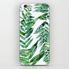 Fern Leaf iPhone & iPod Skin