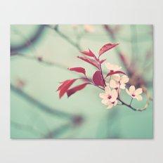 Dream in mint Canvas Print