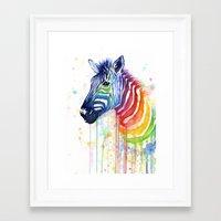 Zebra Watercolor Rainbow Painting   Ode to Fruit Stripes Framed Art Print