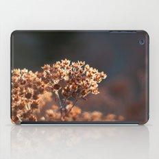 Morning's Light iPad Case
