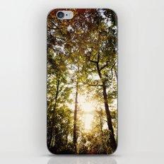 Sunset Glow iPhone & iPod Skin