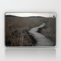 Path IV Laptop & iPad Skin