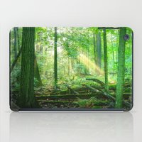 Devil's Lake State Park iPad Case