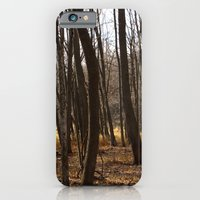 iPhone & iPod Case featuring Forest Through the Trees by Amything Goes