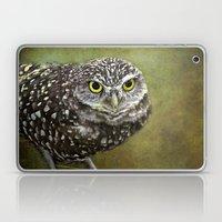 Burrowing Owl  Laptop & iPad Skin