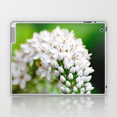 Spring has Bloomed Laptop & iPad Skin