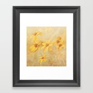 Dreamy Yellow Coreopsis Framed Art Print