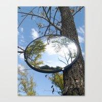 Surveillance Tree #1 Canvas Print