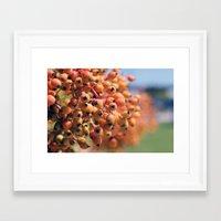 Berry Bright Framed Art Print