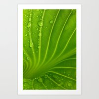 After The Rain # 9 Art Print