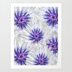 Summer Flower Art Print