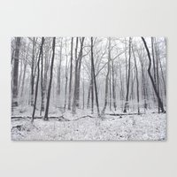 Winter's Woods Canvas Print