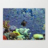 Beautifully Ugly Brown Fish Canvas Print
