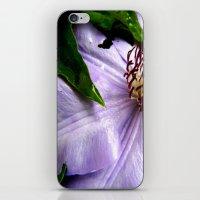 Raindrops On Roses iPhone & iPod Skin