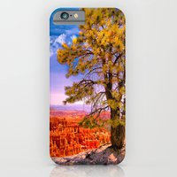 Ponderosa Pine. Bryce Ca… iPhone 6 Slim Case