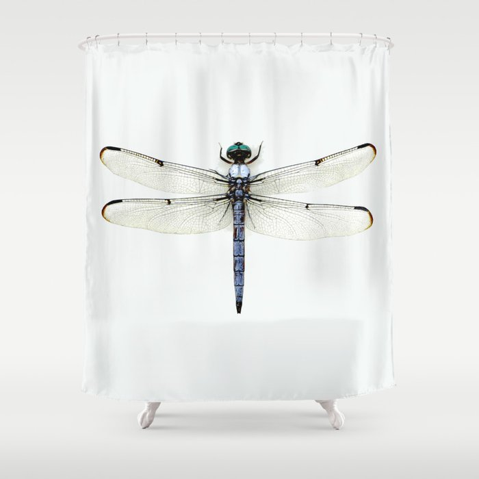 dragonfly #1 Shower Curtain by Okti | Society6