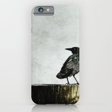 Crow at Sea iPhone 6s Slim Case