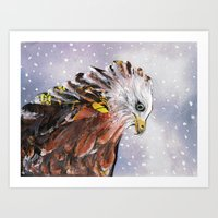 Sad  Hawk Art Print
