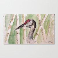Head Of Heron Canvas Print