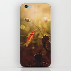 Beauty begins iPhone & iPod Skin
